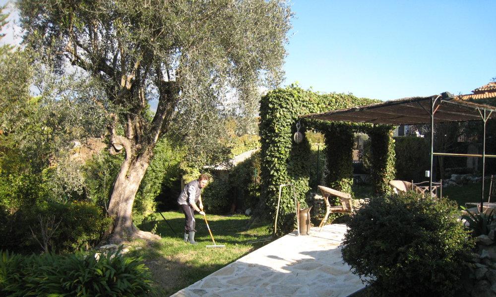 Service jardinage bricolage acsed for Service jardinier